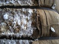Closeup of some cotton housed at the Slater Mill