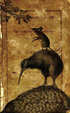 darksilenceinsuburbia:    Adam Fisher. We Are Animals.