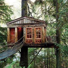 Bridge leading to tree house