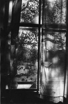 window || #photography #blackandwhite #shadow #light