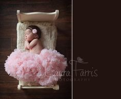 sweet. by laura farris.