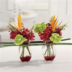 small tropical designs