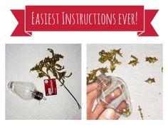 Love this idea for easy #DIY ornaments from @Heidi!  #fabulouslyfestive