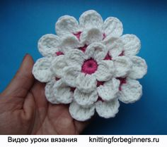 Dahlia a tejer, hacer punto, ganchillo dalia, flores de ganchillo, tutoriales de vídeo que hace punto, esquema de crochet tejer dahlia