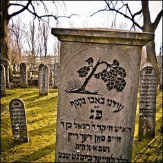 Jewish Cemetery Groningen