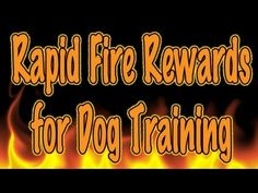 Use Rapid fire rewards to increase duration and build a stronger behavior.