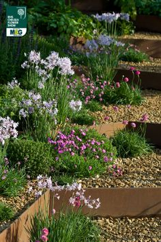 RHS Chelsea Flower Show - Show Garden - A Garden for First Touch at St George's First Touch – supporting sick and premature babies at St George's Hospital Patrick Collins