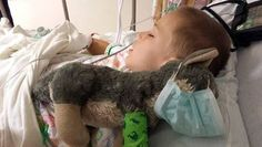 Meet 9-year-old Joshua. He recently had to go in for surgery and was so nervous that he brought along his stuffed wolf. The wolf had a tear in its leg, so Joshua asked if his doctor could do a wolf surgery too. His parents said 'no.'  But when they walked into the recovery room to see their son, they discovered the little wolf laying next to him; this time, with a surgical mask, a little cast, and surgical quality sutures in his leg.