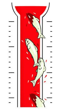 Alaskan Salmon Evolve Along With the Climate - NYTimes.com - Rapid evolution