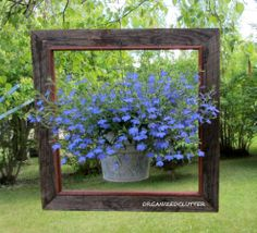 Hometalk :: One of my first spring posts this year was a framed lobelia plant hang…