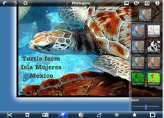70 interesting ways to use an iPad in the classroom