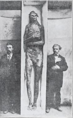 Giant skulls and skeletons of a race of Goliaths have been found on a very regular basis throughout the Midwestern states for more than 100 years. Giants have been found in Minnesota, Iowa, Illinois, Ohio, Kentucky and New York, and their burial sites are similar to the well-known mounds of the Mound Builder people.   The spectrum of Mound builder history spans a period of more than 5,000 years (from 3400 BCE to the 16th CE), a period greater than the history of Ancient Egypt and all of its dy