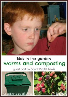 learning about worms and composting {theeducatorsspinonit}