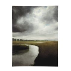 Storm Over The Marsh Giclee, looks like it goes right through the wall.