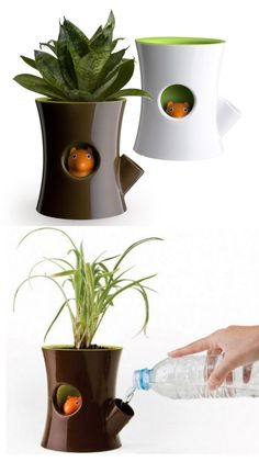 Squirrel Planter - the little squirrel will hide his head as a reminder for you to water your plant!  I NEED THIS.