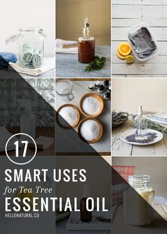 17 Smart Uses for Tea Tree Oil | HelloNatural.co