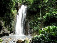 Diamond Falls Botantical Gardens, Soufriere, St. Lucia.....Parts of Superman 2 were filmed here.