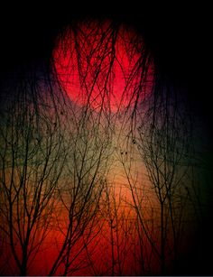 The crimson sun set the night on fire.  There would be no peace in this mean spirited twilight.  It would be the end of days for our last fling of fury, our last fiery breath of passion embraced.  The blood red jewel would fade and with it my heart... (poem, Jamie Miranda) pic. dwellfreely: La tarde en llamas