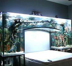 fish tank bed