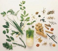 Medicinal herbs.
