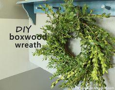 smartgirlstyle: DIY Boxwood Wreath
