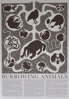 Burrowing Animals Poster. $60