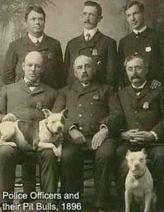 Vintage Police Service Dogs