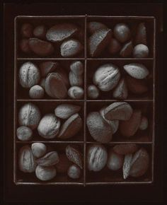 "Olivia Parker, ""Mixed Nuts from the Ephemera portfolio."" Museum of Fine Arts, Boston."