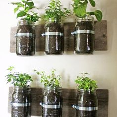 Great for small places or apartment gardening!