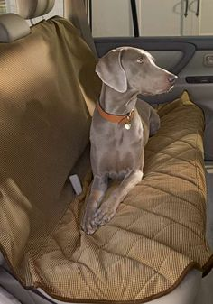 Quickly protect your car's interior from your pets with the Quilted Back Seat Cover; an easy solution to allow your best friend to go with you on all your adventures.