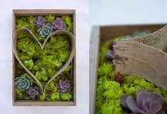 How-To: Birch Bark Heart Planter