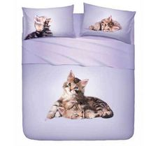 Crazy Cat Queen Sheets/Pillows Set – Crazy Cat Lady Clothing