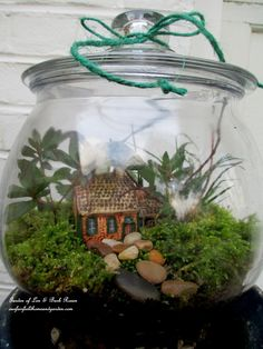 Make a rustic getaway in a terrarium using directions from Our Fairfield Home & Garden, just click through! plant, tiny gardens, rustic gardens, fairi garden, miniature gardens, cottage gardens, mini gardens, diy projects, rustic cottage