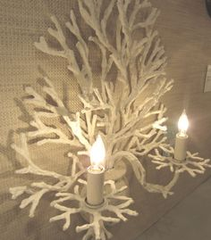 beach house lighting - coral sconce - currey & co