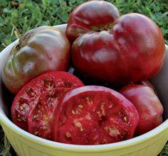 Tomato Black KrimNONGMO Organic Heirloom Seed by organicherbals, $2.00