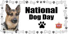 Today is #NationalDogDay