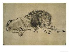 Lion Giclee Print by Rembrandt van Rijn at Art.com