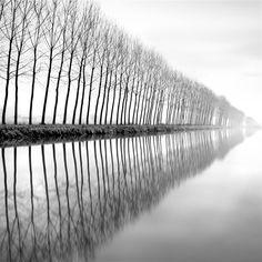 fotowelt, bresciani, infin, art, compositionalyst, beauti, alberto, beauty, black