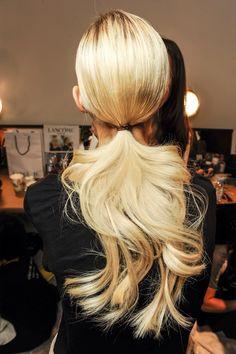blonde pony