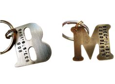 pet, person dog, dog id tags