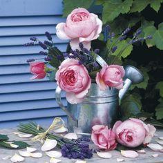 . flowers