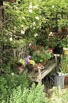 Summer seat in a shady garden pergola