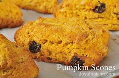 Pumpkin Scones - joy of baking