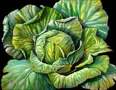 Cabbage Susannah Blaxill