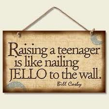 funny parenting, remember this, funni, write a book, teenager quotes