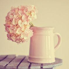 pink flowers, vintage accessories, pale pink, blush pink, fresh flowers, pastel colors, hydrangea, print, vintage flowers