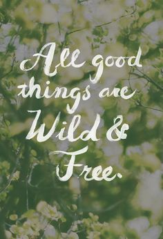 """All good things are wild & free."" Henry David Thoreau"