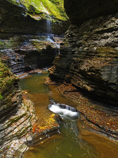 Fall at Watkins Glen, NY