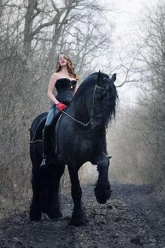 Girl, corset, black Percheron before it turns grey? Horse could carry knight in full armor. Gosh