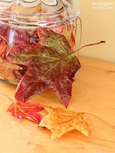 How to Preserve Fall Leaves - use decoupage. So easy!